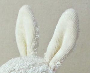 うさぎの耳